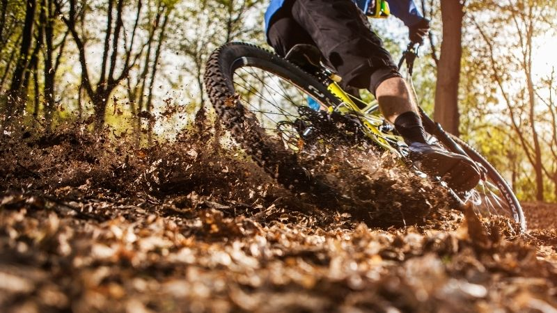 Mountain bike for hire